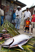 Fishermen trade the catch of the day with villagers, Soufriere, Dominica