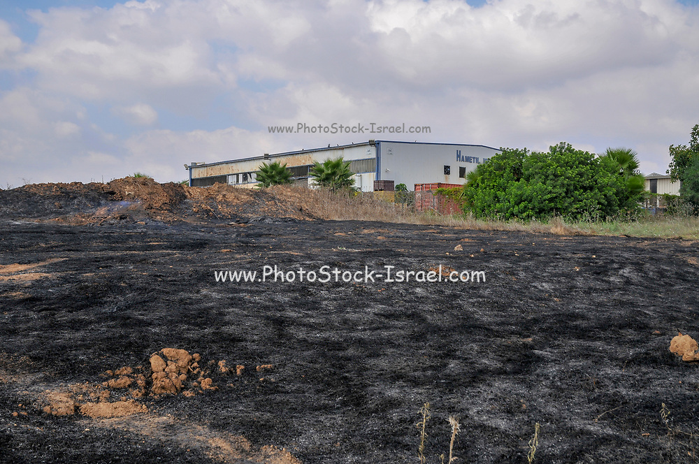 burn field caused by Kite bombs that were flown from Gaza with a lit petrol soaked cloth, to set fires to Israeli fields and crops. Photographed on July 13, 2018