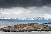 Ushuaia Travel