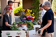 Dave and Reid Bell of Bell Organic Gardens distribute weekly shares of produce to the customers of their Community Supported Agriculture (C.S.A.) organic farming business in Salt Lake City Utah.