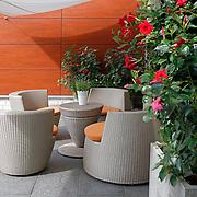 Modern Garden 1068