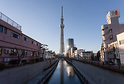 Tokyo Skytree towers over Oshiage, Tokyo, Japan. Thursday January 5th 2017