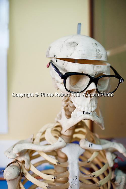 Goofy skeleton in a school calassroom