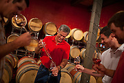 The King Family Vinyard in Corzet, Virginia. .Photo by Justin Ide