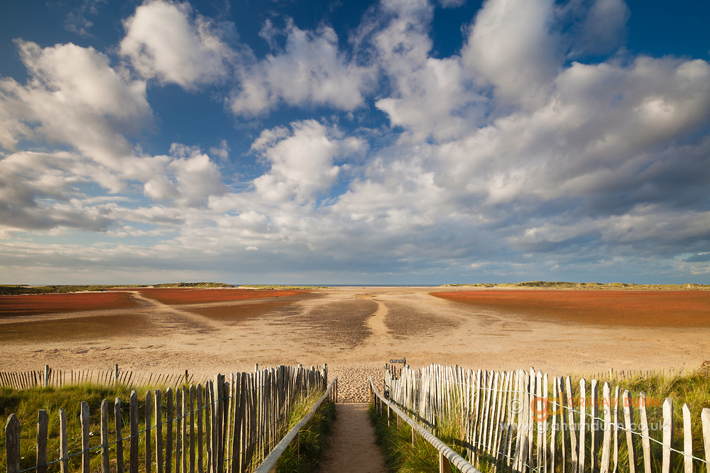 A fenced pathway leads to Holkham Bay, which is partially enveloped by a semi-circle of sand dunes and woodland. Holkham National Nature Reserve, North Norfolk, East Anglia.