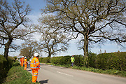 HS2 security guards monitor a Stop HS2 activist occupying a mature oak tree on the opposite side of the road in order to try to prevent it and two other oak trees from being felled to construct a temporary access road for the HS2 high-speed rail link on 26th April 2021 in Quainton, United Kingdom. Environmental activists continue to oppose the controversial HS2 infrastructure project from a series of protection camps along its Phase 1 route between London and Birmingham.
