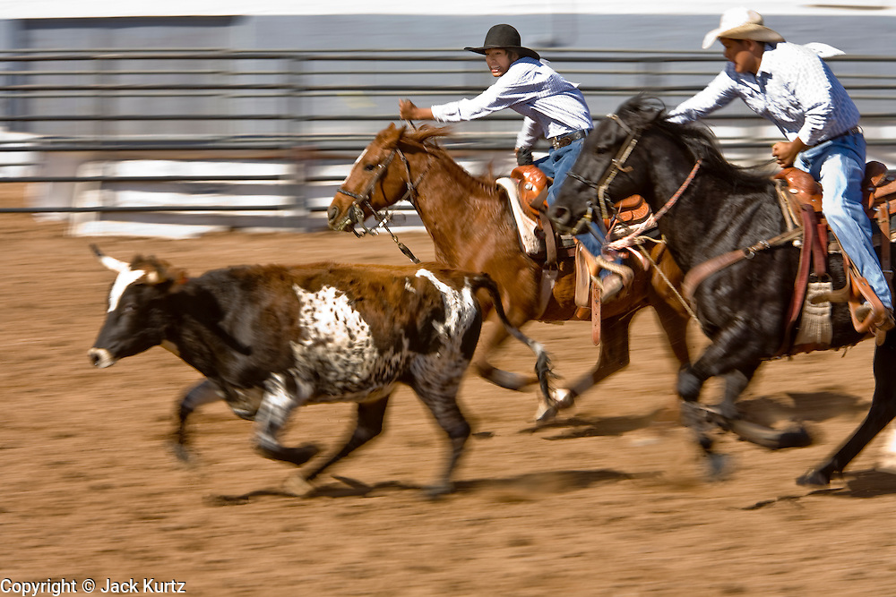 November 2, 2008 -- PHOENIX, AZ: Steer wrestling at the Arizona High School Rodeo at the Arizona State Fair in Phoenix. In steer wrestling the competitor jumps from his horse to a running steer and wrestles it to the ground. Teams from across the state participate. The Arizona High School Rodeo Association sponsors a full season of high school rodeo that culminate in a championship rodeo in June.  Photo by Jack Kurtz