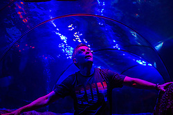 Matt in the tunnel with the sharks above, at Deep Sea World Loch Lomond.