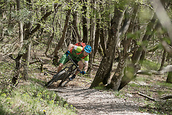 Young biker mountain biking through tree trunks in forest