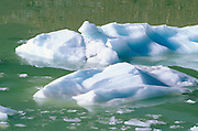 Icebergs on meltwater from the Angel Glacier under Mount Edith Cavell, Jasper National Park, Alberta, Canada