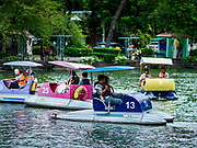 17 AUGUST 2018 - BANGKOK, THAILAND:   Paddle boats on the lake in Dusit Zoo in Bangkok. The zoo opened in 1938. The zoo grounds were originally the Dusit Royal Garden. The zoo is scheduled to close by the end of August 2018 because it is being relocated to Nakhon Pathom province, south of Bangkok.      PHOTO BY JACK KURTZ