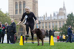 © Licensed to London News Pictures. 26/10/2017. LONDON, UK.  TRACEY BRABIN MP and her dog, Rocky jump at the Westminster Dog of the Year Competition held in Victoria Tower Gardens. The Westminster Dog of the Year Competition is organised jointly by the Kennel Club and the Dogs Trust..  Photo credit: Vickie Flores/LNP