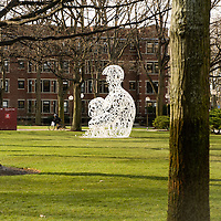 Alchemist, created by Spanish contemporary artist Jaume Plensa and commissioned specifically for the sesquicentennial celebration by an anonymous donor, the sculpture consists of mathematical symbols in the shape of a human form.