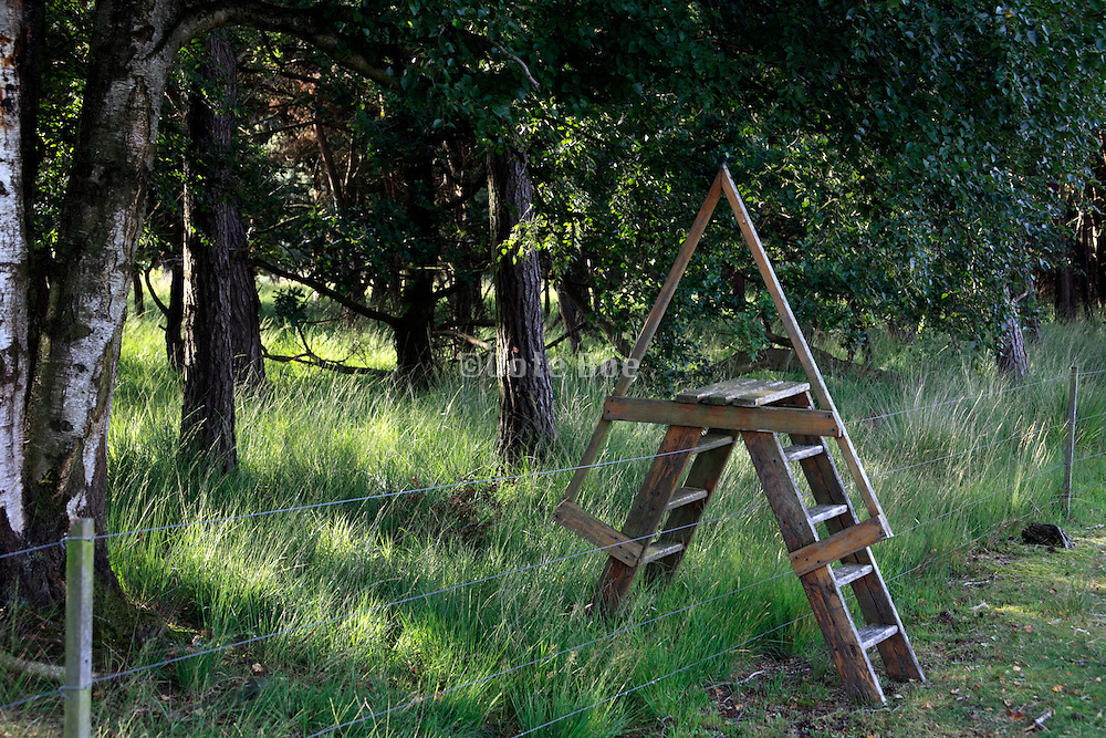 step ladder to pass over electric fence