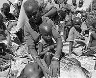 Karamajong girl and her baby removing sunflower seed from a sunflower head . Karamoja Uganda Africa