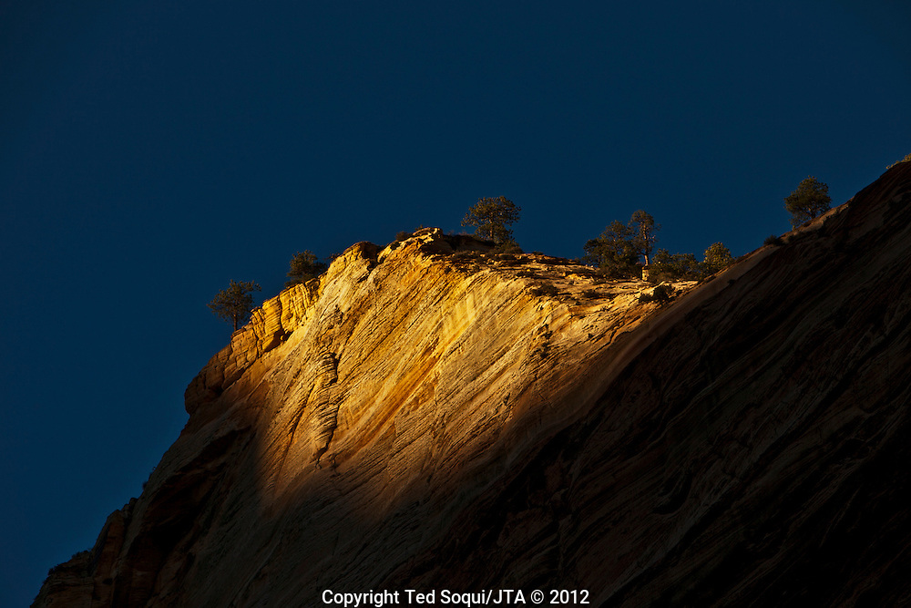 Afternoon light inside the Zion National Park in Southwestern Utah.