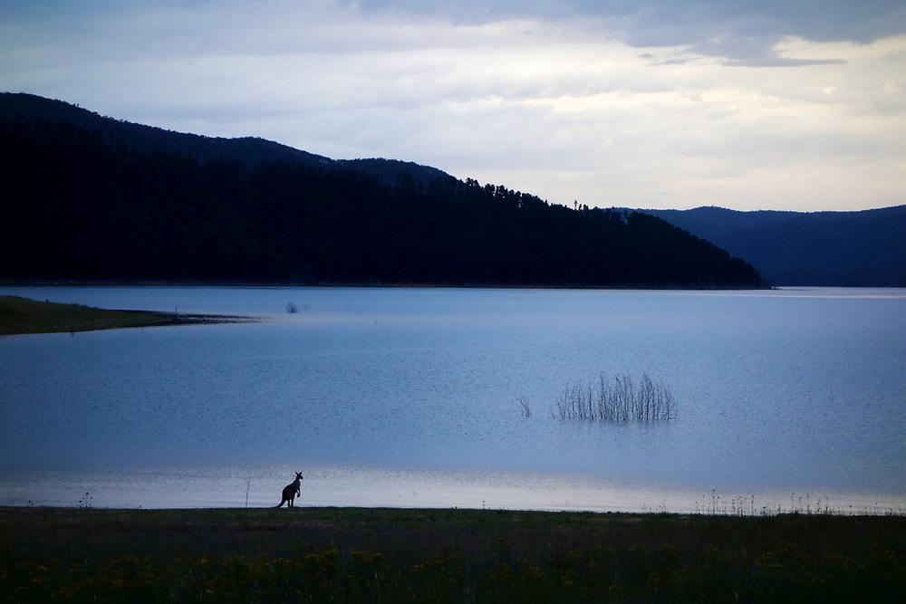Lake Jindabyne. Snowy Mountains of New South Wales, Australia. Photo by Lorenz Berna