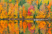 Autumn  colors reflected in Lac Trudel. Great Lakes - St.  Lawrence Forest Region.<br /> Saint-Mathieu-du-Parc<br />Quebec<br />Canada