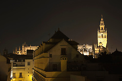 View of Sevilla cathedral at night