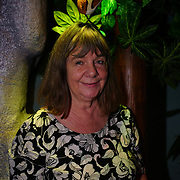 Dozens of family and children bring to A World Inside A Book at the Discover Children's Story Centre with Julia Donaldson is an author and Axel Scheffler is a German-born illustrator and animation 11th November 2017,  Stratford, London, UK
