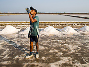 09 MARCH 2015 - NA KHOK, SAMUT SAKHON, THAILAND: A Burmese migrant worker on a salt farm near Samut Sakhon, Thailand, drinks an energy drink during the salt harvest. The coastal provinces of Samut Sakhon and Samut Songkhram, about 60 miles from Bangkok, are the center of Thailand's sea salt industry. Salt farmers harvest salt from the waters of the Gulf of Siam by flooding fields and then letting them dry through evaporation, leaving a crust of salt behind. Salt is harvested through dry season, usually February to April. The 2014 salt harvest went well into May because the dry season lasted longer than normal. Last year's harvest resulted in a surplus of salt, driving prices down. Some warehouses are still storing salt from last year. It's been very dry so far this year and the 2015 harvest is running ahead of last year's bumper crop. One salt farmer said prices are down about 15 percent from last year.    PHOTO BY JACK KURTZ