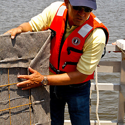 St. Tammany Parish President Kevin Davis, holds a sample of the oil barrier fabric that is being installed in St. Tammany Parish on Saturday, July 10, 2010 at East Pearl Island near Slidell, Louisiana. The oil barrier fabric which comes in five foot by 20 foot panels is being installed on pilings along the marsh the barrier stops oil above and below the surface of the water. St. Tammany Parish is installing an initial 4000 feet of barrier in order to see how the system works compared to the standard oil containment and absorbent boom that can only contain oil from the surface. (Photographer: Derick E. Hingle)
