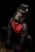 Ben Jamin, crouching in gorilla outfit with top hat at the Vaguely Dead Ball