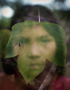 Katiana and leaf.