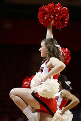 26 November 2016: cheerleader during an NCAA  mens basketball game between the Ferris State Bulldogs the Illinois State Redbirds in a non-conference game at Redbird Arena, Normal IL
