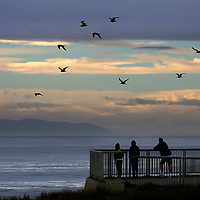 A flock of gulls wings over the Monterey Bay in Santa Cruz as a trio of visitors at Lighthouse Point takes in the view of fog and clouds.<br /> Photo by Shmuel Thaler <br /> shmuel_thaler@yahoo.com www.shmuelthaler.com