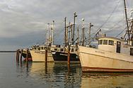 Fishing Boats, Marina, Hampton Bays, NY