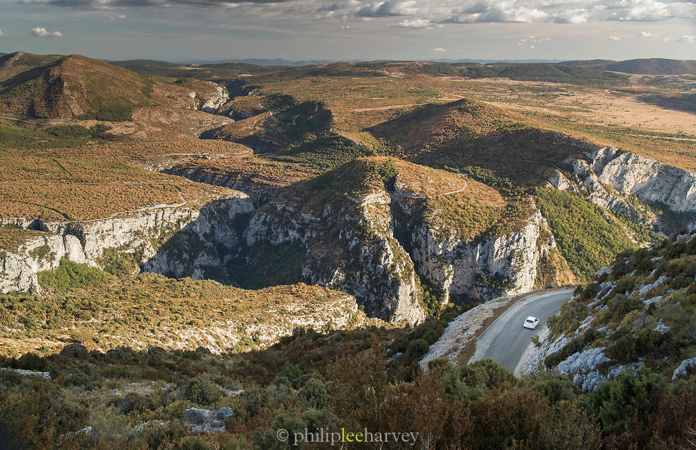 Winding gulch in rocks covered with trees, Verdon Natural Regional Park, France