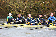 Crew: 195   Op 8+ BAND-4   University College (Oxford) Boat Club   UCO-MENZIES<br /> <br /> Wallingford Head 2017<br /> <br /> To purchase this photo, or to see pricing information for Prints and Downloads, click the blue 'Add to Cart' button at the top-right of the page.