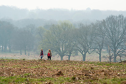 © Licensed to London News Pictures. 02/04/2014. Richmond, UK. Two woman walk across the park.  Visitors to Richmond Park had low visibility today April 2nd 2013. High levels of air pollution are set to spread across England and are expected  to get worse. Photo credit : Stephen Simpson/LNP