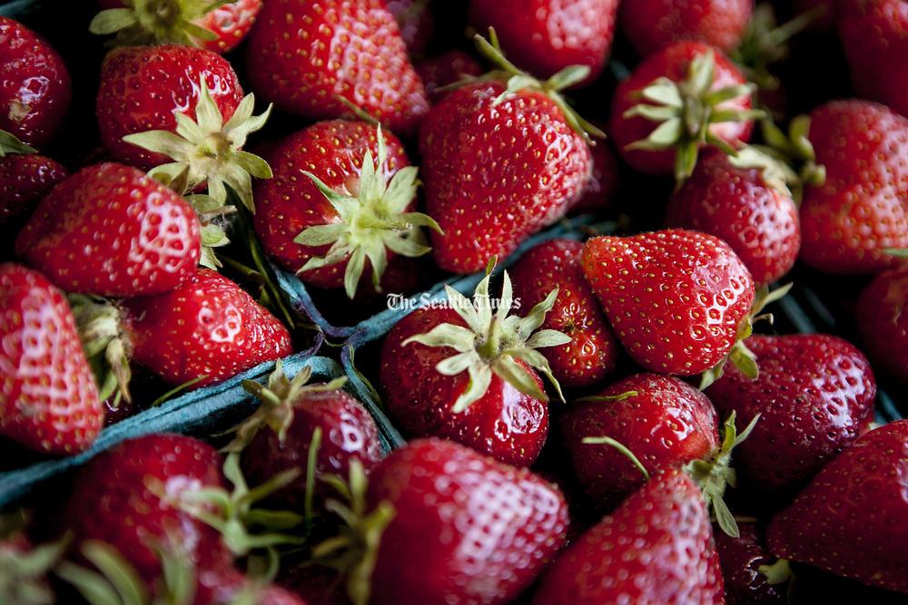 Totem variety strawberries. (Bettina Hansen / The Seattle Times)