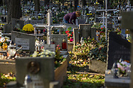 A woman cleans a grave surrounded from a sea of graves at Rakowicki cemetery in Krakow, Poland 2019.