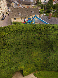 © Licensed to London News Pictures. 07/08/2017. Cirencester, UK. Foresters Jason Buckton (L) and John Rutterford trim the top of the world's tallest yew hedge on The Bathurst Estate. The 40 foot tall 150 yard wide hedge is trimmed every august over a two week period. Six inches of growth are cut making a ton of clippings. The clippings have been used in past years in the making of a cancer drug.   Photo credit: Peter Macdiarmid/LNP