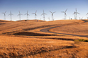 Wind Energy In California