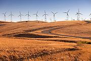 Wind Energy In California
