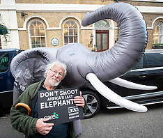 Elephant Protest 29th October 2018