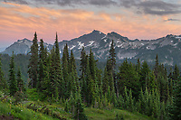 Tatoosh Range Mount  Rainier National Park