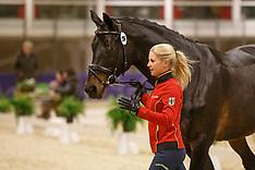 Horse Inspection Dressage - Goteborg 2016