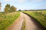 Chalk landscape prehistoric Ridgeway long distance route way, Overton Hill, Marlborough Downs, Wiltshire, England, UK