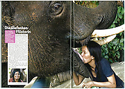Lek Chailert with an elephant she raised named Jungle Boy.  Photographed for Stern View.