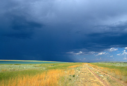 Country dirt road through an open field under stormy skies