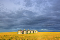 South East of Calgary near Indus, AB<br /> <br /> ©2015, Sean Phillips<br /> http://www.RiverwoodPhotography.com