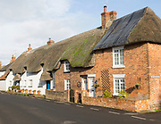 Historic row of thatched cottages in village of Upavon, Wiltshire, England, UK