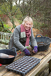 Carol Klein taking root cuttings from a poppy