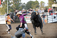 Wednesday's 2014 Professional Bull Riders event at the Salinas Sports Complex.