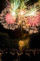 Crowd of people watch nightime fireworks display